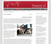 Pünderich | Ort und Umgebung