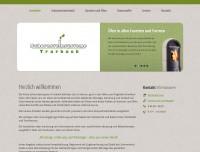 Schornsteinsysteme Trarbach | Startseite